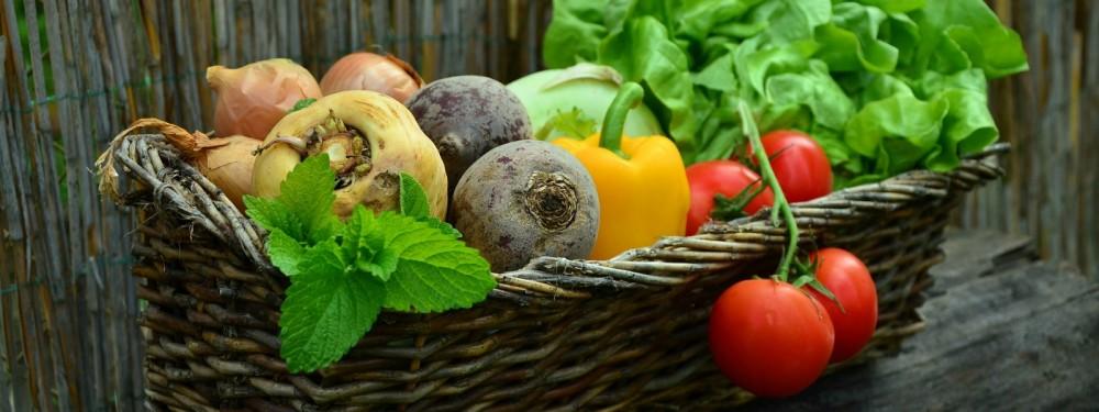 grow-your-own-veg